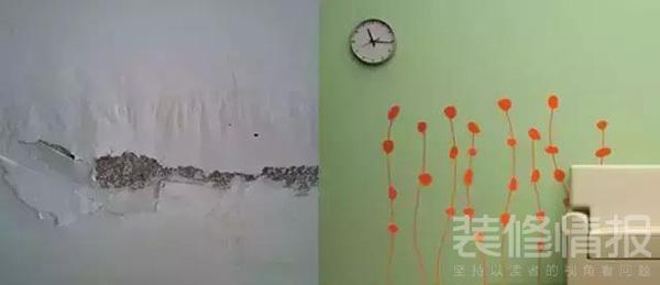 老房翻新 (1).jpg